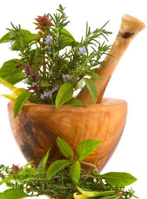 Ervas eram usadas para esconder o hálito desagradável.
