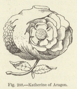 Katherine of Aragon. Illustration for Historic Devices, Badges and War-Cries by Mrs Bury Palliser (Sampson Low, 1870).